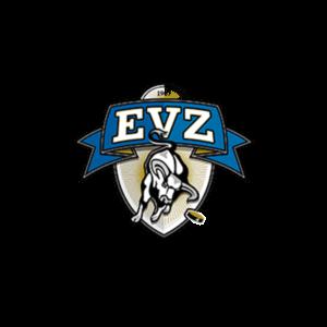 Bestellung EVZ